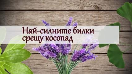 Кои са най-силните билки срещу косопад
