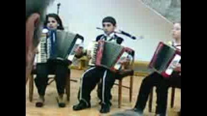 Akordeonistite(popica)