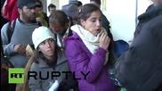 Австрия: Близо 800 бежанци потеглиха от Виена за Мюнхен