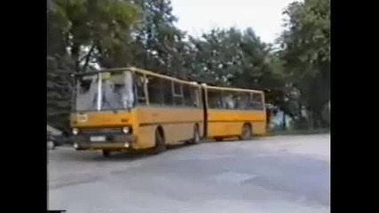 Ikarus buses in the world 77 (албернау)