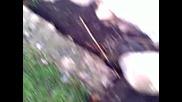 Kunduz Deli Super Inceleme 2014 Hd