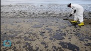 Cleanup of Oil-Fouled California Beach Could Take Months