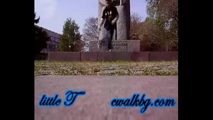 little T a.k.a s1mps0n cwalkin