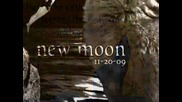 New Moon - New Posters