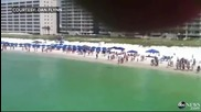Хора в паника крещят на плуващи туристи за приближаваща акула чук към тях