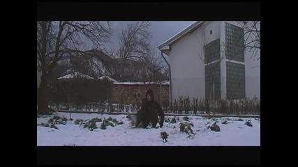 Quaresma77 Freestyle - Winter Edition