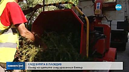 СЛЕД БУРЯТА: Разчистването в Пловдив продължава