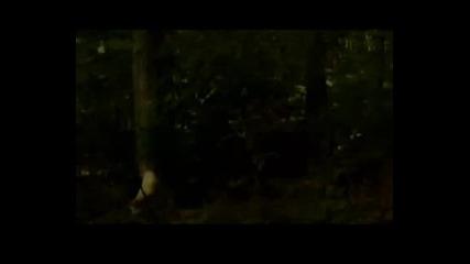 Robin Hood - Hes A Pirate 2