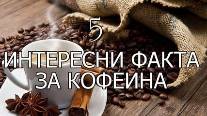 5 интересни факта за кофеина