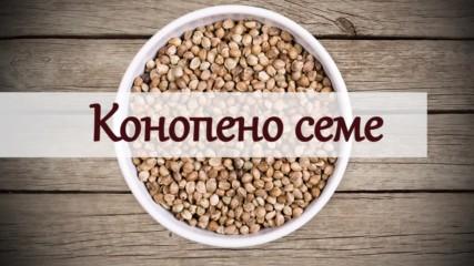 Kонопеното семе - суперхрана и лек!