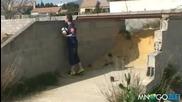 Реми футбол 2010