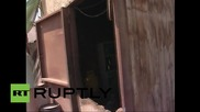 Chile: Malnourished 2-year-old boy rescued after being breastfed by dog