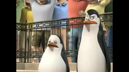 The Penguins of Madagascar - Tangled in the web