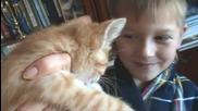 """Смях!!котка, която казва """"ухади, ухади"""" (""""върви си!"""") :d"""