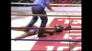 Muay Thai Knockouts (360p)