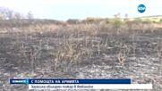 Пожар вилня в Ямболско
