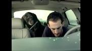 Много Смях !!! Маймуна в колата