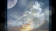 Моцарт - Музика на Ангелите