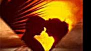 Коцето Калки - Векът На Любовта