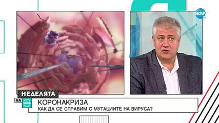 Проф. Балтов: Масовата ваксинация може да започне до две седмици