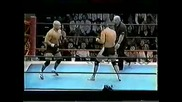 Fedor vs Takada