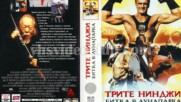 Трите нинджи: Битка в лунапарка (синхронен екип 2, дублаж по канал TV 2, 2009 г.) (запис)