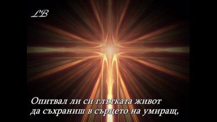 Опитвал Ли Си - Вики Горанова