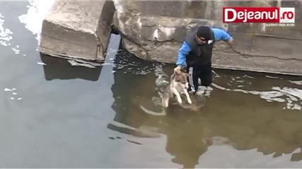 Ето как куче се отблагодарява, след като го спасяват от ледените води