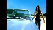 • Arabic Music • Haifa Wehbe - Hassa Ma Bena Fi Haga