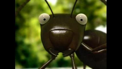 The Ants Minuscule