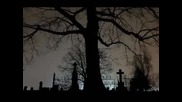 Aia - Cimitir de amintiri