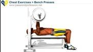 Бодибилдинг упражнения - Лег с щанга - средна част