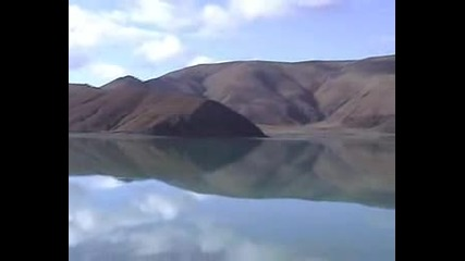 Аквариум - Северный Цвет