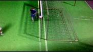фифа 09 гол на Бранислав Иванович