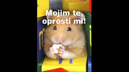 Halid Beslic Duet with Fabruzijem Ne trazi me vise