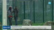 СБЛЪСЪЦИ В КАЛЕ: Повече от 20 души пострадаха в незаконния бежански лагер
