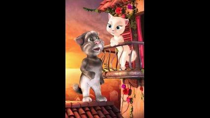 Котето Том пее на Анджела Не казвай любе лека нощ