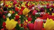 Пролет - Марин Паскалев