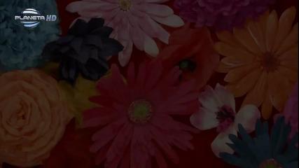 New * Анелия - Да ти викна ли такси * (fan video) [ Full H D ]