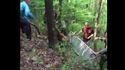 На лов за мечка в Благоевград