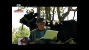 Овчар чати във Facebook и Skype, докато пасе овцете