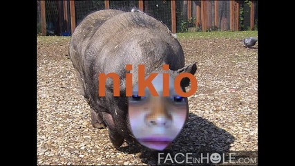 Снимките на:nora winx и nikio