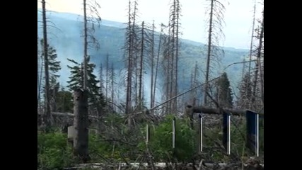 Най-вероятната причина за пожара на Витоша е човешка дейност