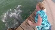 Тя искаше просто нахрани няколко малки рибки но ето какво стана