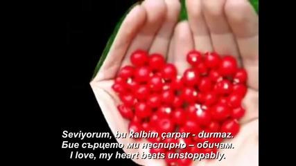 Mustafa Gungece - Seviyorum (prevod) (lyrics)