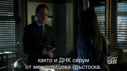Beauty and the Beast / Красавицата и Звяра S01, S02