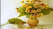 ✿ A Little Sunshine ... (music Nicolas de Angelis) ... ...✿