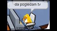Club Penguin Весели Снимки