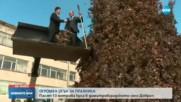 Палят 13 метрова кула в димитровградското село Добрич за Сирни Заговезни