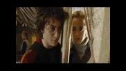 Hermione, Harry, Draco